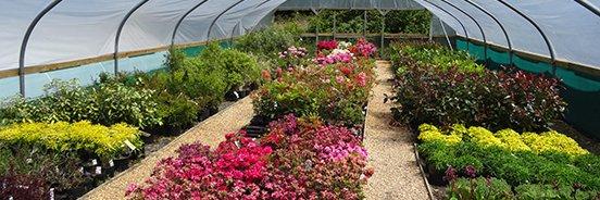 AQFP Series Garden Centre