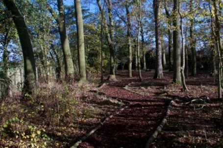 fleckney and spinney volunteering path